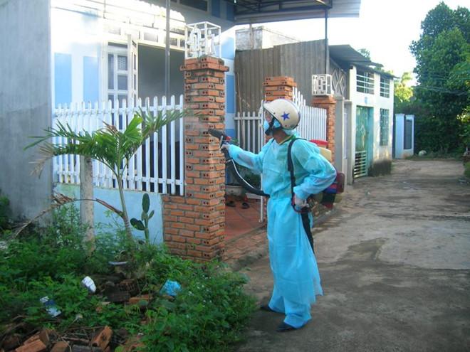 Quy trình phun thuốc diệt muỗi từ Dịch Vụ Xanh